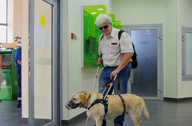 Представьте себе слепого человека, который идет с собакой-поводырем. Все представляют себе обычного слепого человека
