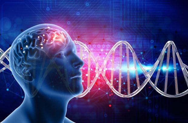 Получается, что чувство юмора напрямую взаимосвязано с процессами, которые у нас происходят в головном мозге.